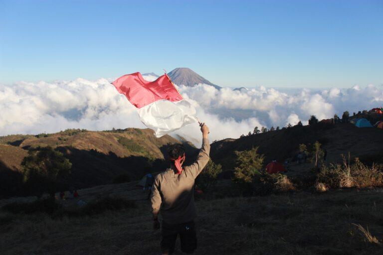 Indonesia's Covid-19 Incentives in 2021